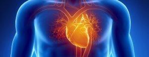 penyakit kardiovaskular