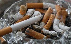nikotin akan meracuni tubuh