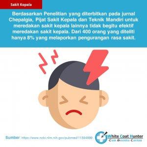 Fakta Sakit Kepala