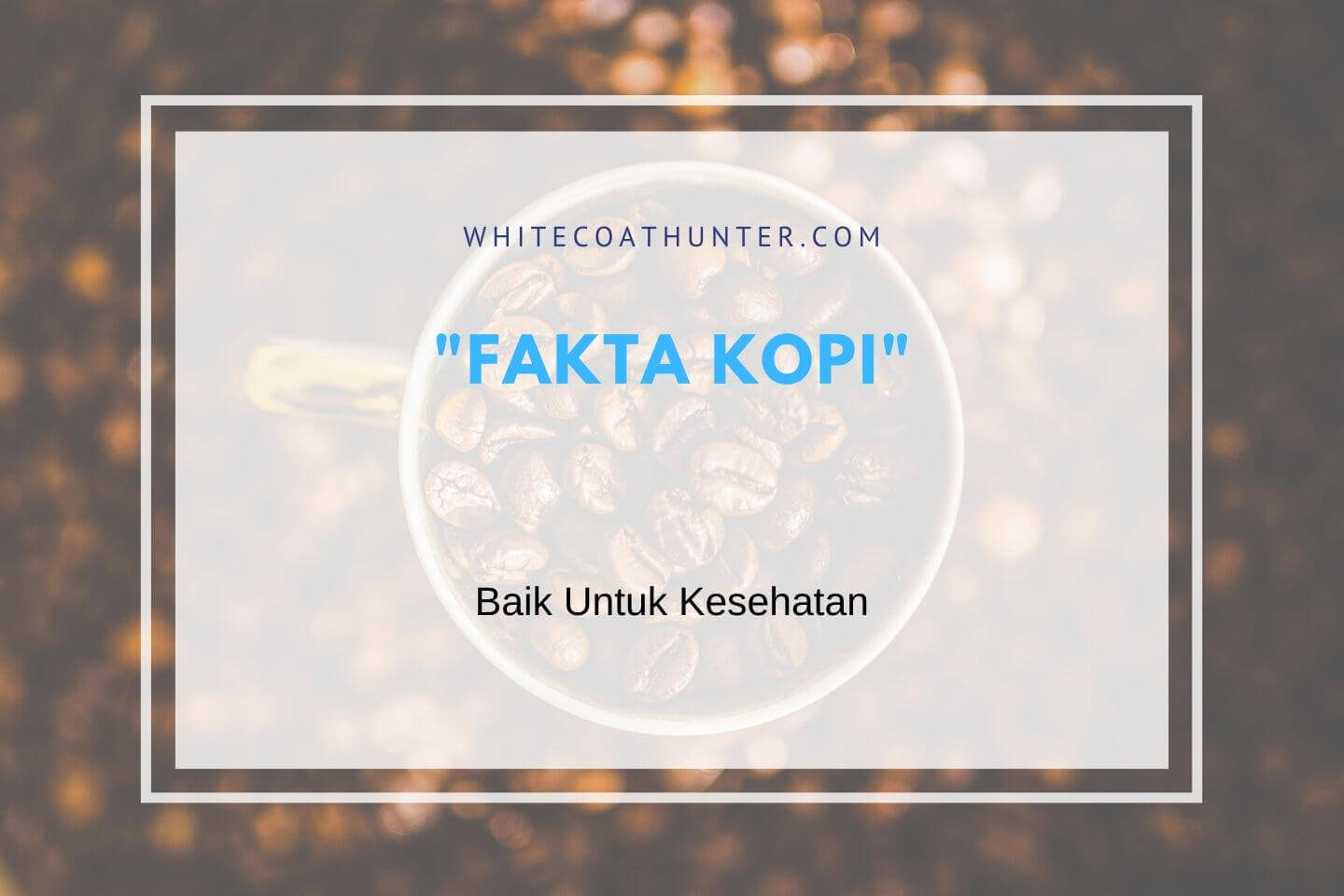 Featured Image Fakta Kopi