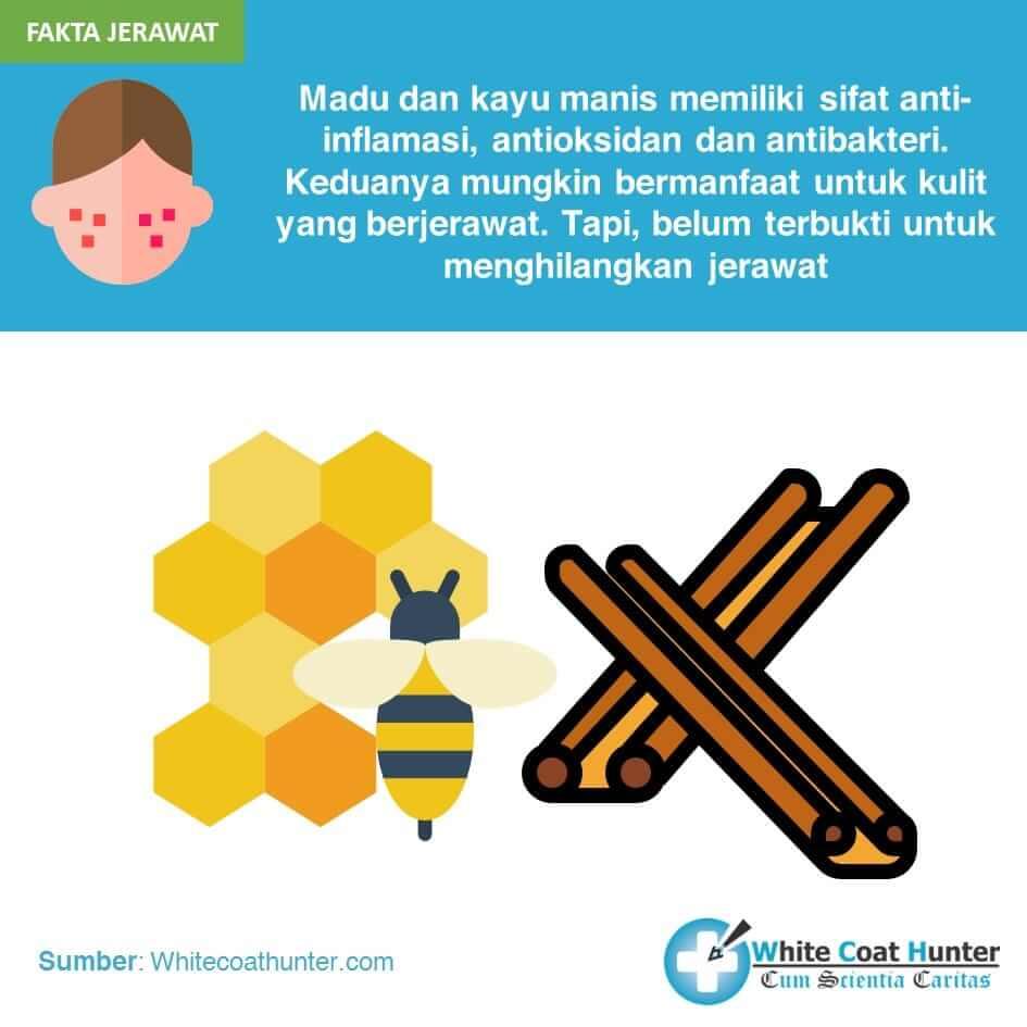 manfaat madu dan kayu manis untuk kulit