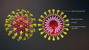Bentuk 3D Virus Corona